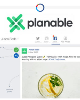 Planable social media management tool