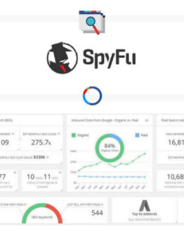 SpyFu competitor analysis