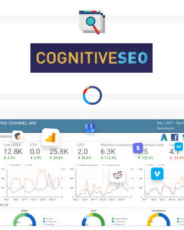 CognitiveSEO seo optimization